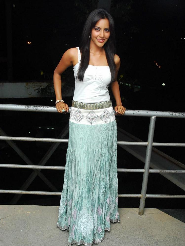 Wonderful India Designer Long Skirts Women Long Skirts And Blouses Fashion