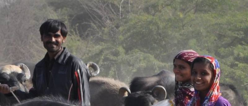 Travel blog India | abundant smile while on the rann of kutch