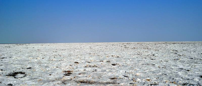 The white salt desert the great rann of kutch