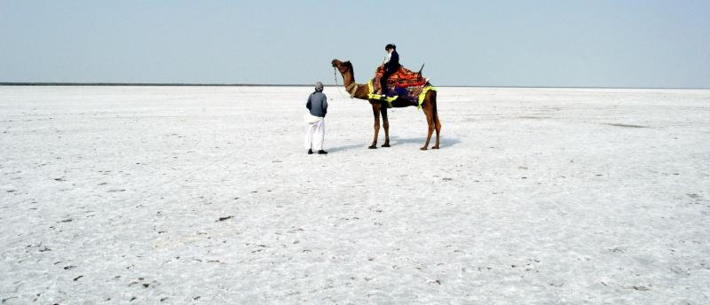 Travel Blog India | white desert | white rann of kutch