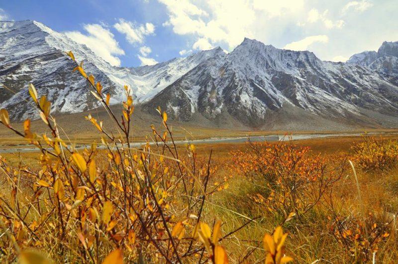 Zanskar valley road trip