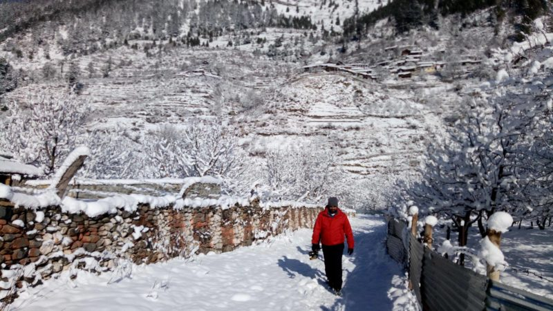 Harshil Dharali in snow pictures